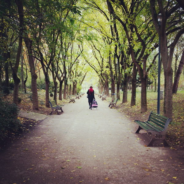 A travers le parc